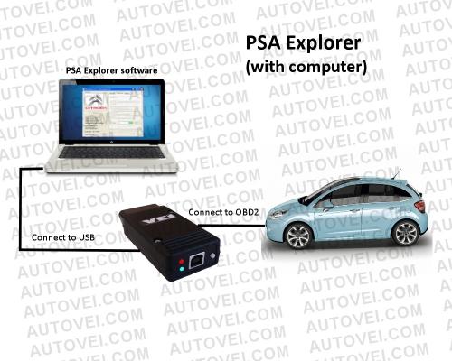 PSA Explorer